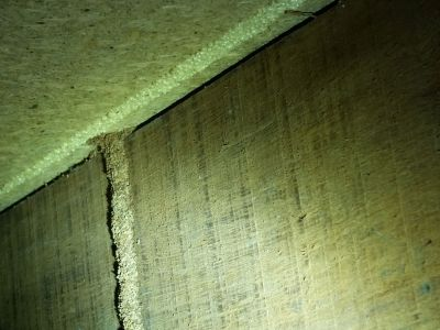 Termite lead found in under house subfloor | Senior Pest Management