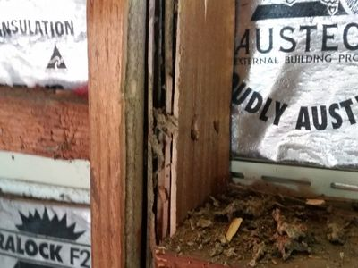 Garage frame eaten by termites | Senior Pest Management